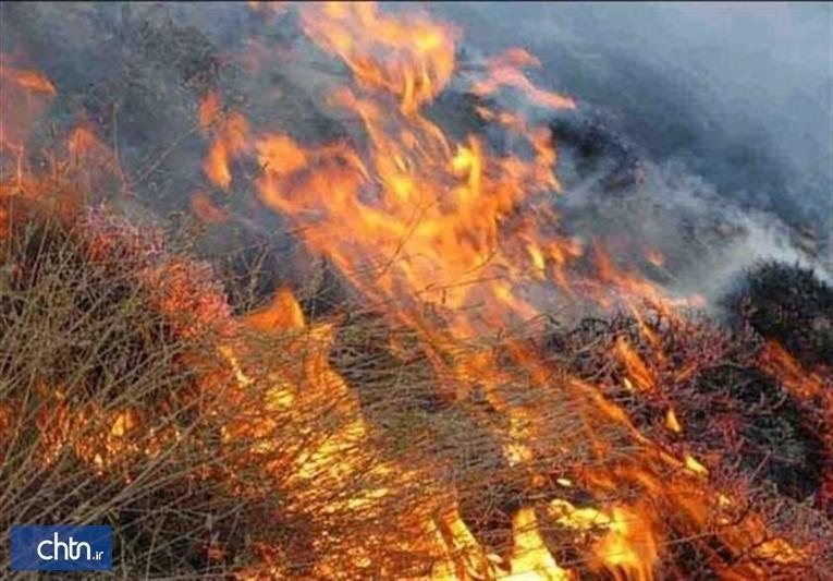 آتش سوزی منطقه دهرود سفلی به آثار تاریخی دشتستان آسیبی نرسانده است